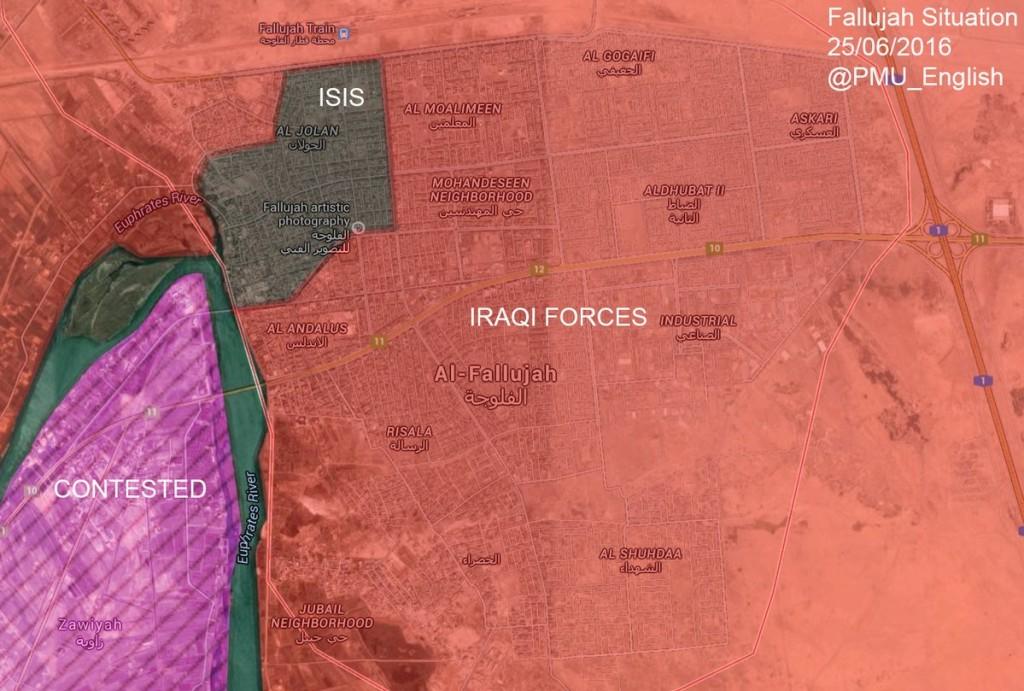 Irakische Streitkräfte befreien Falludscha (3)